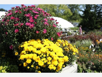 Free Gardening Workshops