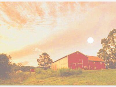 Rockland Farm Alliance Full Moon Twilight Dinner
